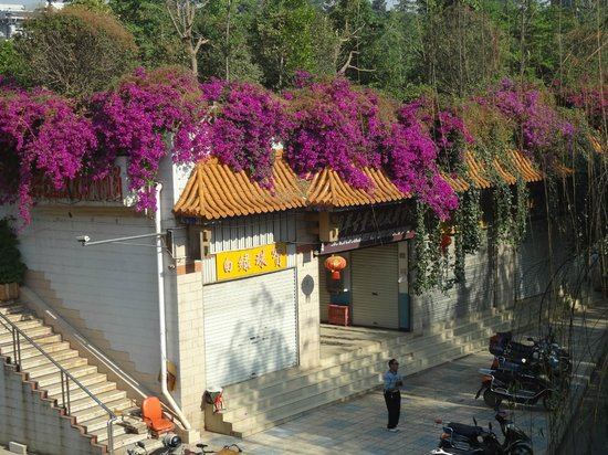Fairyland Hotel Kunming Gulou : Flowers on the roof