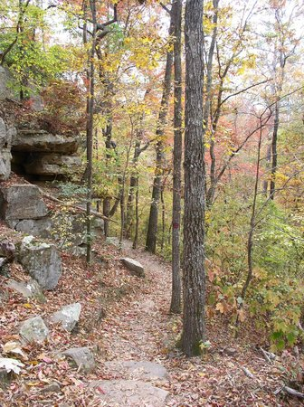 Tishomingo State Park Waterfall - Picture of Tishomingo State Park ...