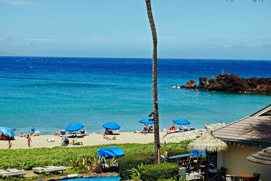 Sheraton Maui Resort & Spa: cabanas and umbrellas were available for rent, steep prices but worth it