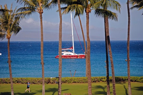 Sheraton Maui Resort & Spa: view of the ocean from the luau grounds