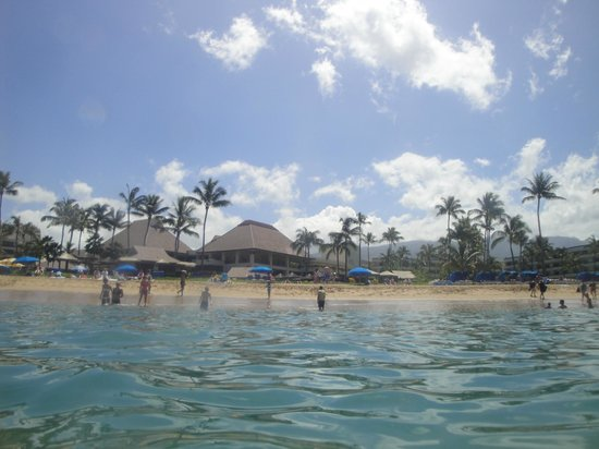 Sheraton Maui Resort & Spa : view of the beach/resort from the ocean