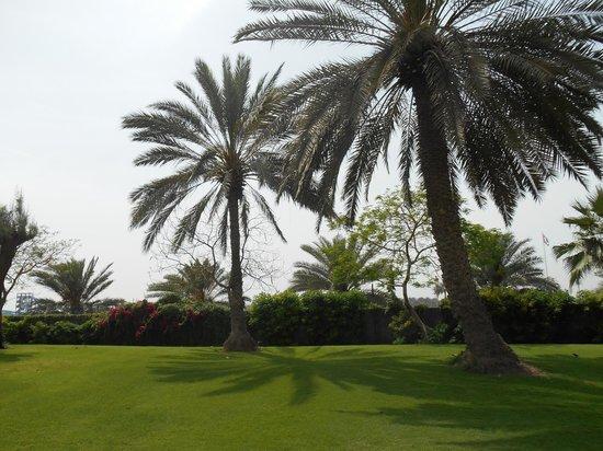 Marbella Resort: территория