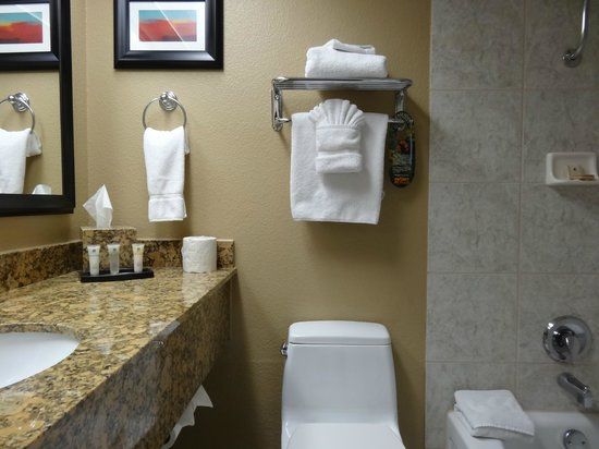 Best Western Plus Casino Royale: Usual amenities