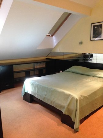 Stony Island Hotel: Room