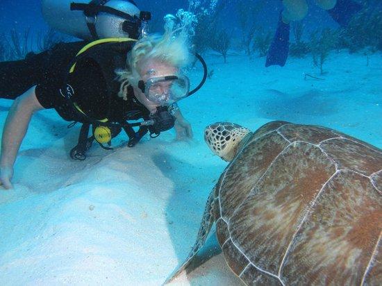 Akumal Dive Shop : Love at first sight