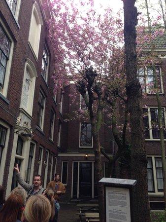 We Bike Amsterdam Tours: WeBikeAmsterdam