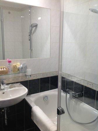 Hotel U Zlateho Stromu: Ванная комната