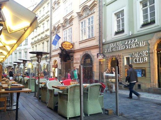 Hotel U Zlateho Stromu: Отель и ресторанчик напротив