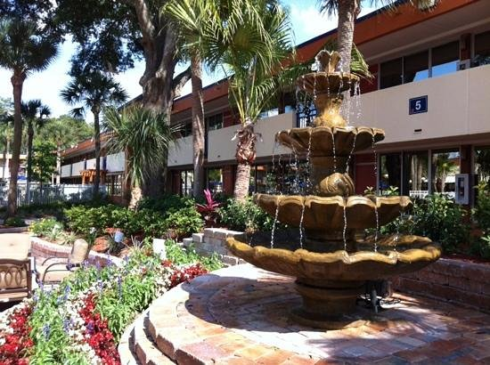 Red Lion Hotel Orlando - Kissimmee Maingate: the garden