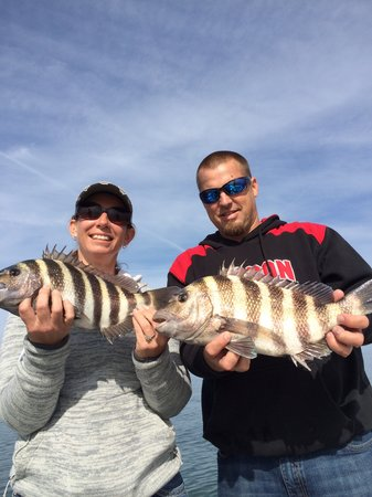 Salt River Outfitters: Crystal River Sheepshead