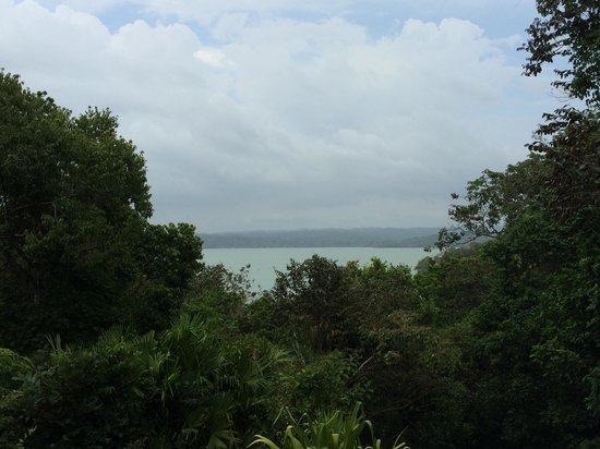 Barro Colorado Island: view from the visitor center