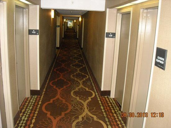 Quality Inn Medical Park: Hallway Corridor