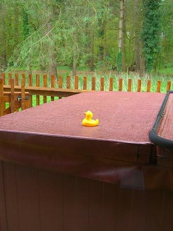 Forest Holidays Thorpe Forest: Hot tub duck