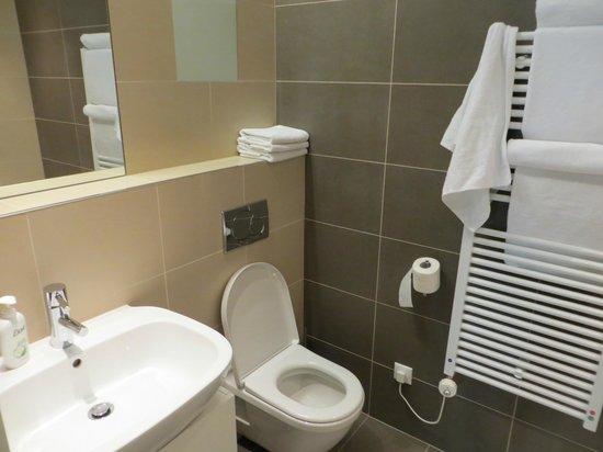 Retezova Apartments : the bathroom