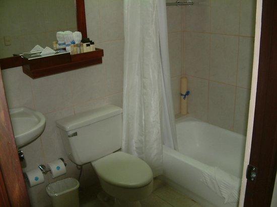 Hodelpa Centro Plaza Hotel: BATHROOM AVERAGE
