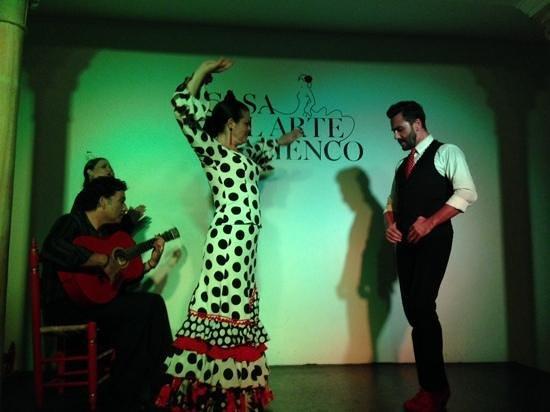 Casa del Arte Flamenco: O desafio do Flamenco