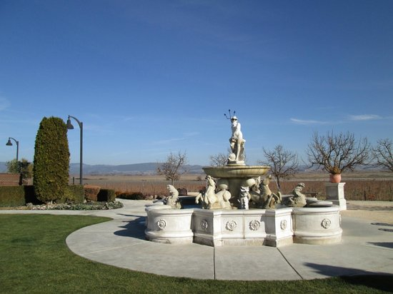 Valley Wine Tours : winery