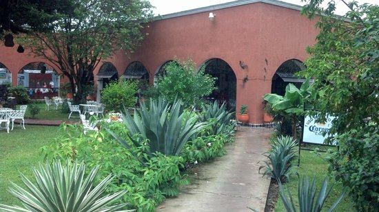 The Plaza: Tequila Making