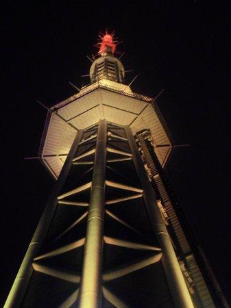 Canton Tower : башня