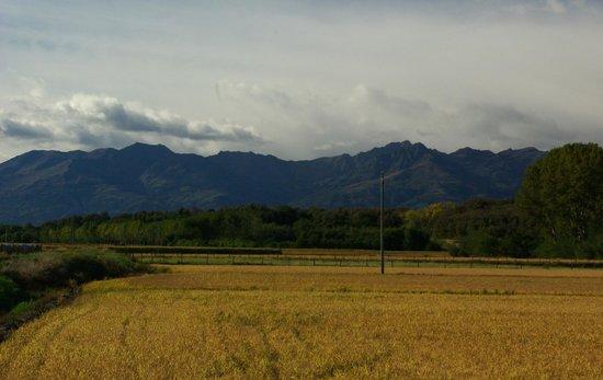 Villa Pichetta B&B : nearby countryside