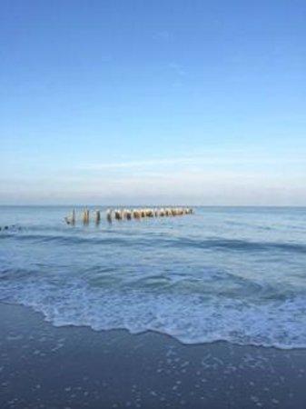 The Naples Beach Hotel & Golf Club: walk on the beach in the morning