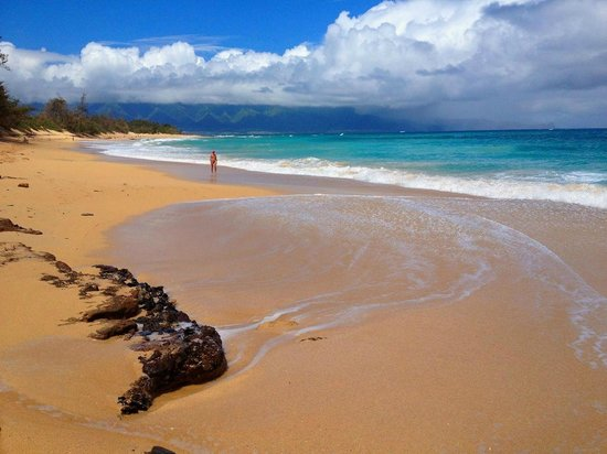 Nalu Kai Lodge : Baldwin Beach Park 10-15 minute walk