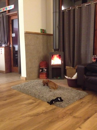 Forest Holidays Cropton, North Yorkshire: Charlie loving the fire