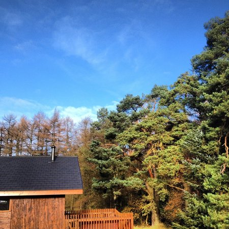 Forest Holidays Cropton, North Yorkshire: One of our cabins!