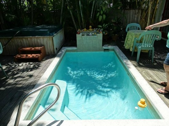Knowles House B&B: Dipping pool - charming