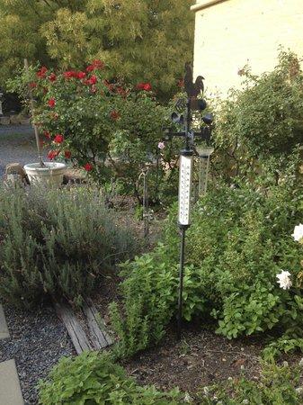 The Globe Inn: Outside Garden Room