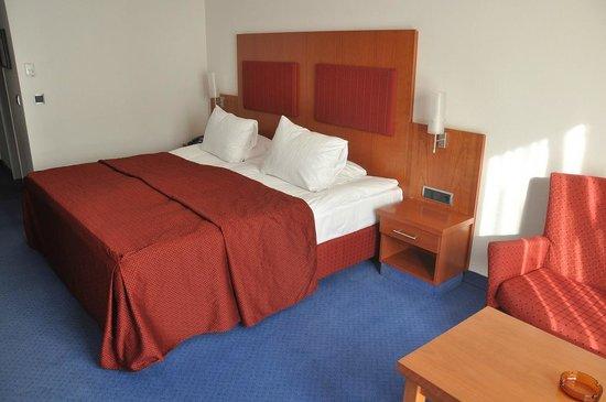 Hotel Erzgiesserei Europe: My room
