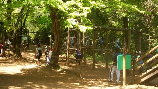 Shimizu Park: ファミリーコース