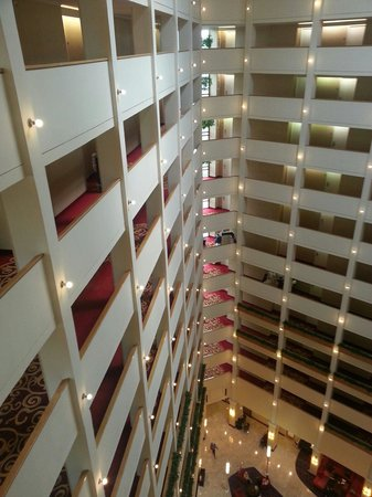 Atlanta Marriott Century Center/Emory Area : 12th Floor nice atrium view.
