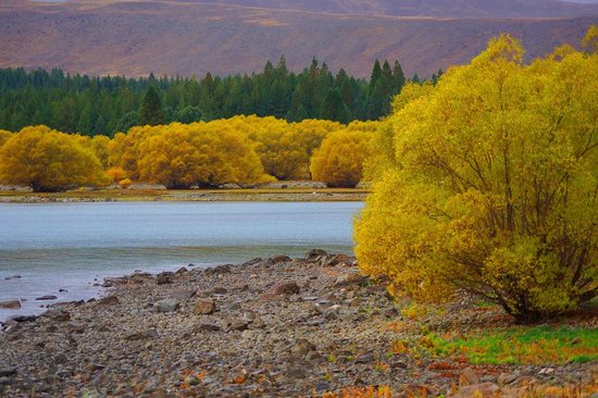 Parkhead Motel: Lake Tekapo in Autumn