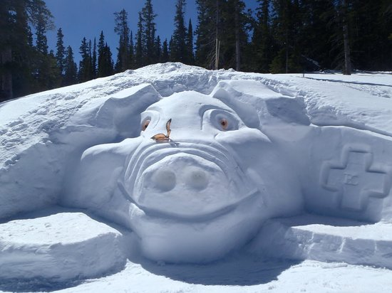Beaver Creek Ski Area: The Centennial Pig