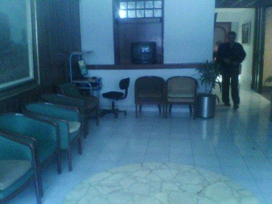 Hotel Diligencias: Al lobby le hace falta una manita de gato.