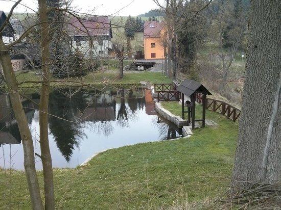 Hotel Star 1.2: Teich vor dem Hotel