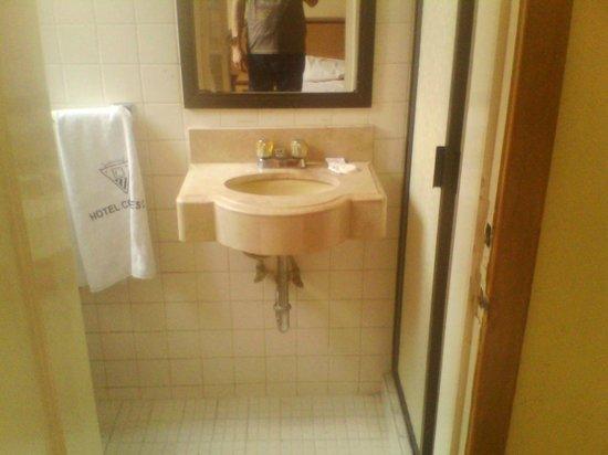 Hotel Congreso: El baño bastante sucio e invadido de cucarachas.