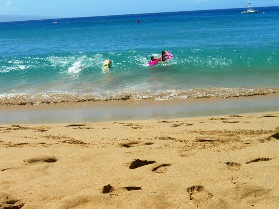 Westin Maui Resort And Spa : They have some nice waves!