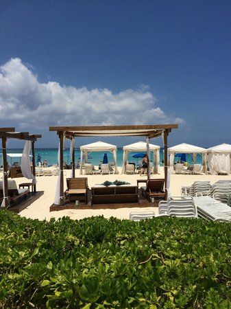 The Westin Grand Cayman Seven Mile Beach Resort & Spa: View of the beach from my poolside chaise.
