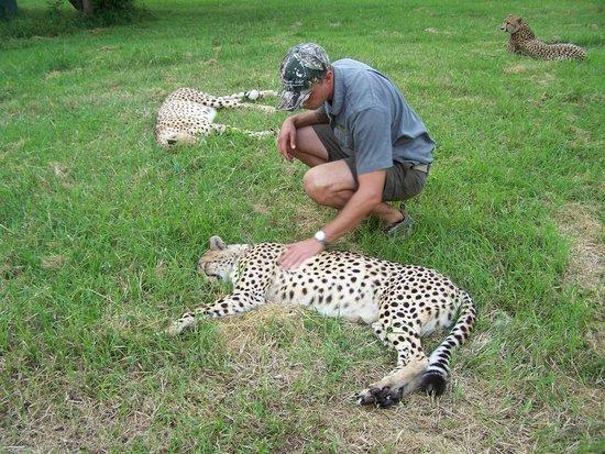 Emdoneni Cheetah project: Pieter (Guide)