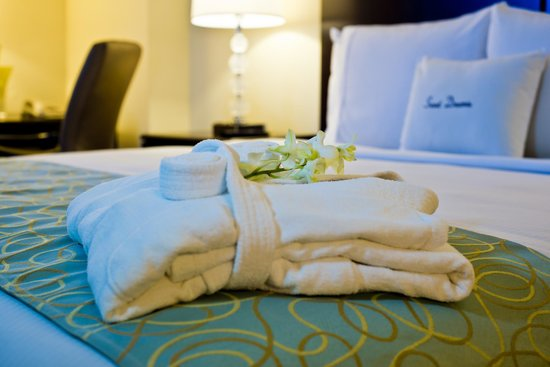 DoubleTree By Hilton Panama City: Deluxe and Suite amenities