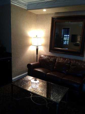 Chateau Inn & Suites: Couch with pullout