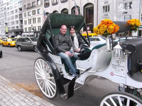 NYC Horse Carriage Rides: Luiz's carriage