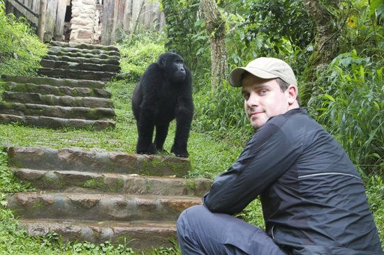 The Engagi Lodge: Me + a gorilla!