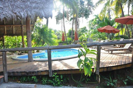 Bosque del Cabo Rainforest Lodge : Pool