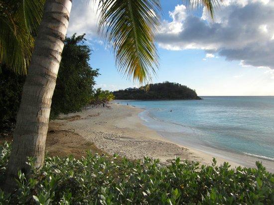 Cocobay Resort : Cocobay Beach