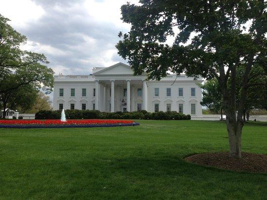 Capital City Bike Tours: the White House