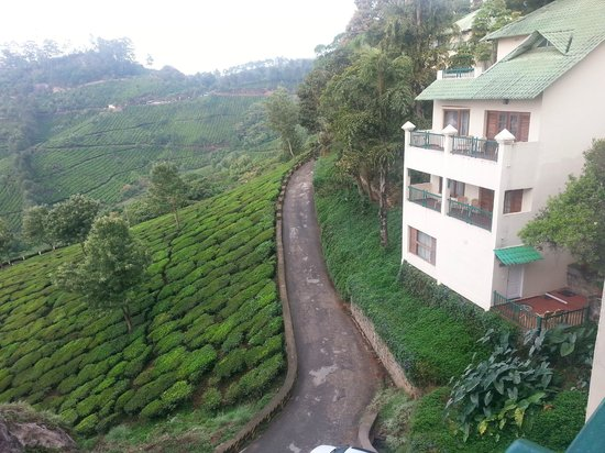 Club Mahindra Munnar : view from the room