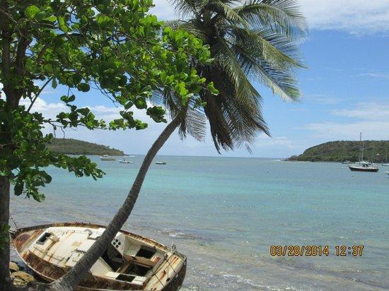Trade Winds Guesthouse: Beach
